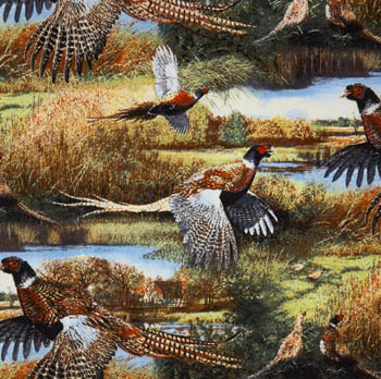 Feathered Run by Springs Creative - Pheasants