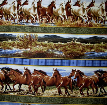 Hautman Horses Country by VIP Cranston - Border Stripe