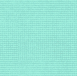 Popcorn the Bear by Quilting Treasures - Tiny Check Teal
