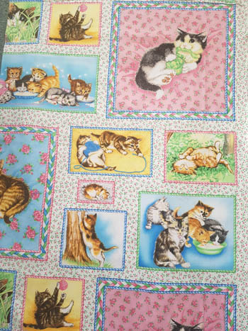 Fuzzytail Kittens & Pups - Kitten Panel