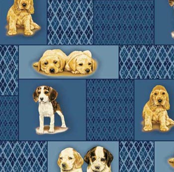 Puppy Love by Robert May - Puppy Patchwork on Blue